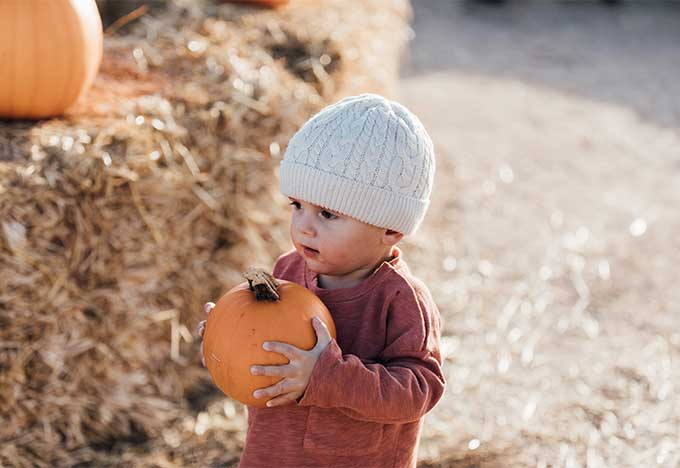 Whiskey & Lace Blog: Pumpkin Patch Fun