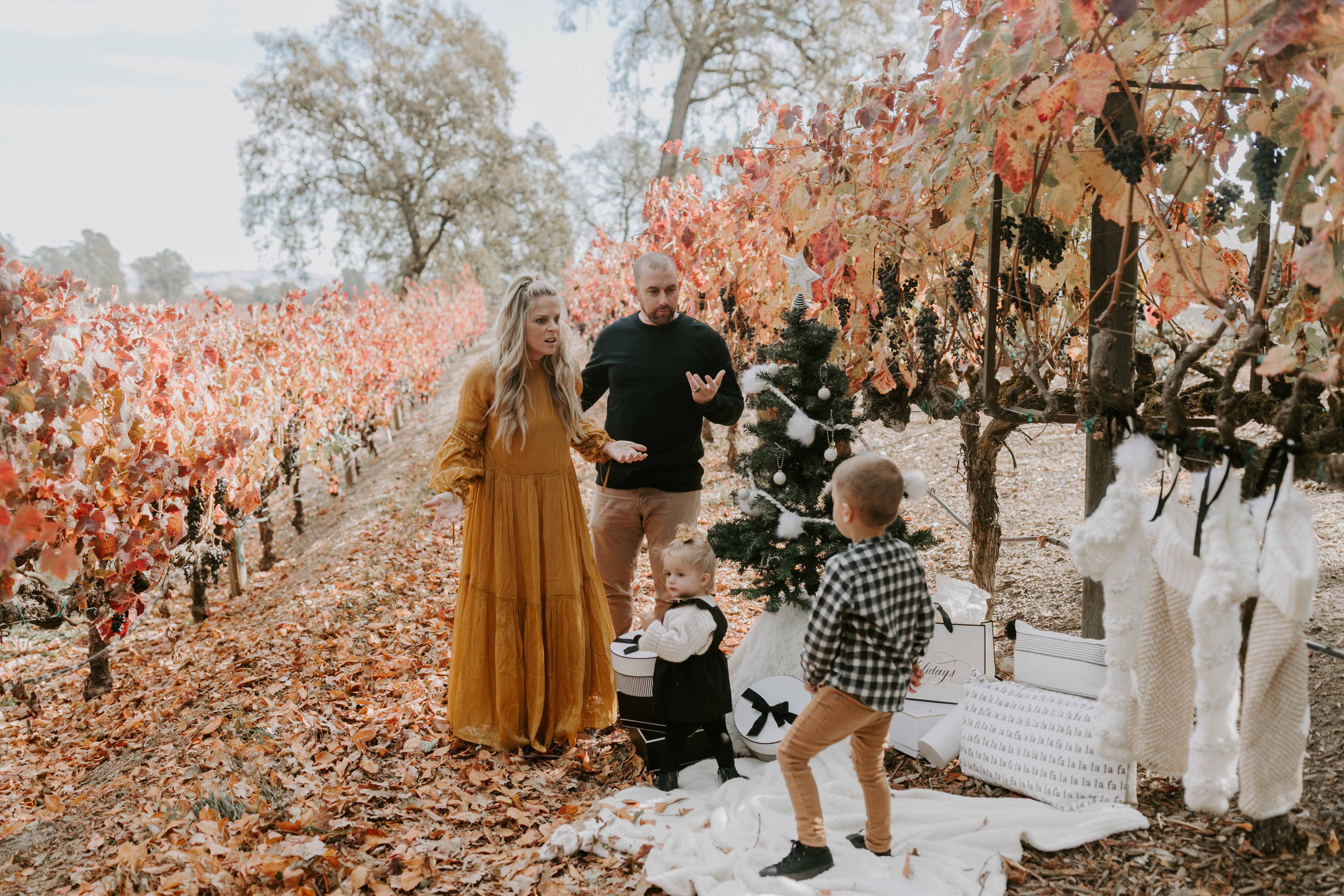 Merry Christmas Wishes and a Happy New Year from Us by popular North Carolina life and style blog, Whiskey and Lace: image of a family taking family Christmas pictures in a vineyard.